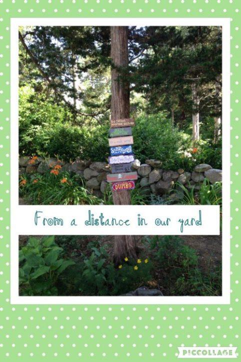 Backyard Magic at a distance