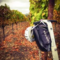 Why Walk When You Can Segway Through The Wineries of Sonoma County