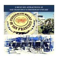 6 Must See Attractions At San Francisco's Fisherman's Wharf