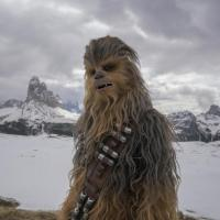 Chewbacca Gives Oscar Worthy Performance Of A Lifetime In Solo: A Star Wars Story Blasting Into Theaters May 25
