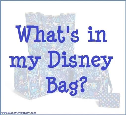 disney bag 2