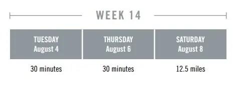 week 14 plan