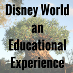 Using An Educational Guide to Walt Disney World on vacation