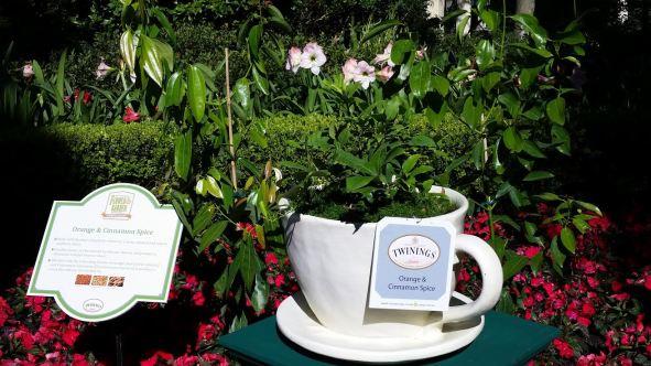 Royal Garden Tea Tour - Disney in your Day