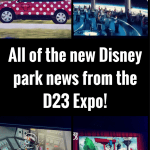All of the new Parks news from the D23 Expo!