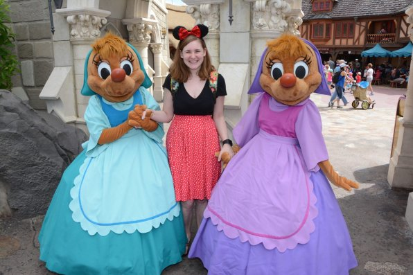 why being an adult in Disney World is awesome - Disney in your Day
