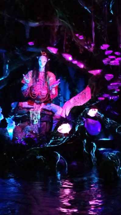 Tips for visiting Pandora - Disney in your Day