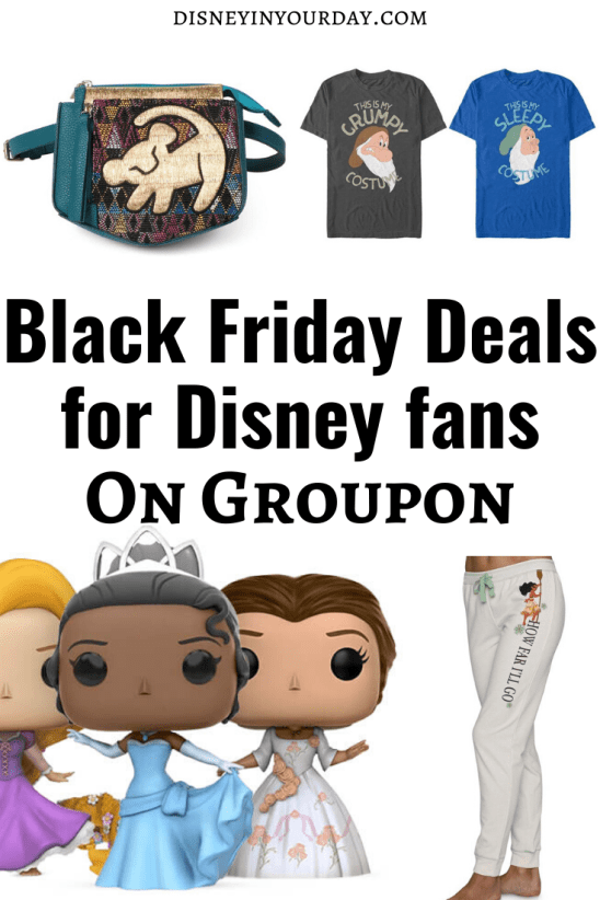 Groupon deals for Disney - Disney in your Day