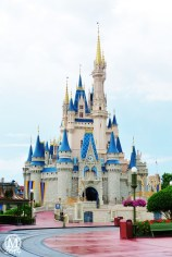 Cinderella Castle - Magic Kindom