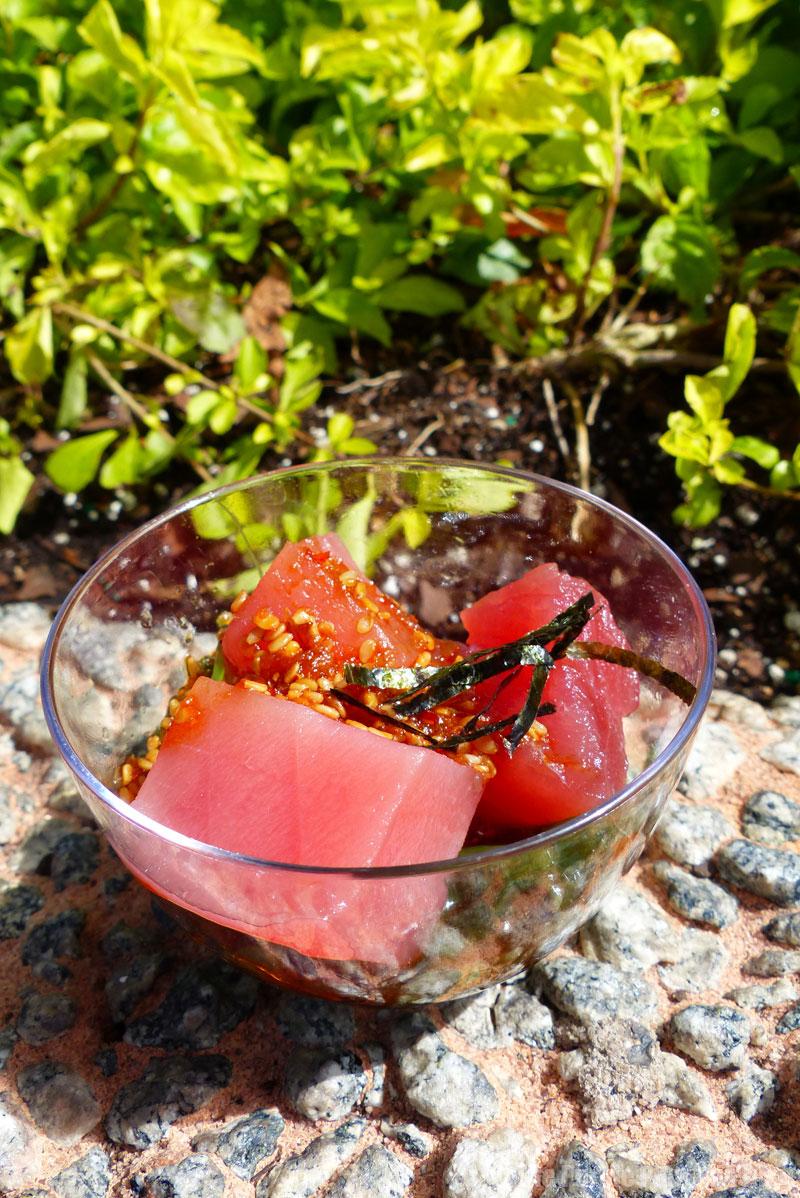 Epcot Food & Wine Festival 2015 - Tuna Poke
