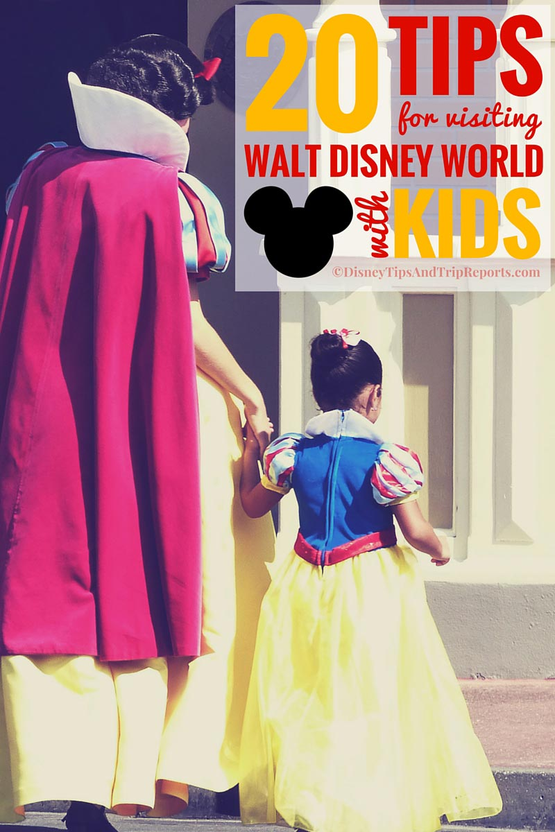 Tips For Visiting Walt Disney World With Kids