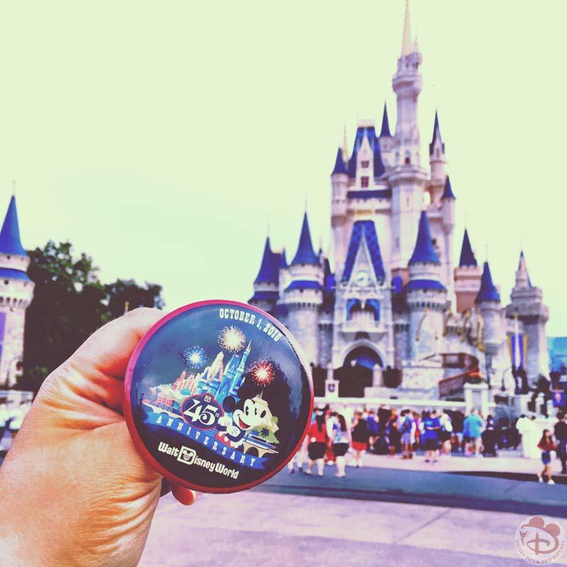 45th Anniversary Walt Disney World