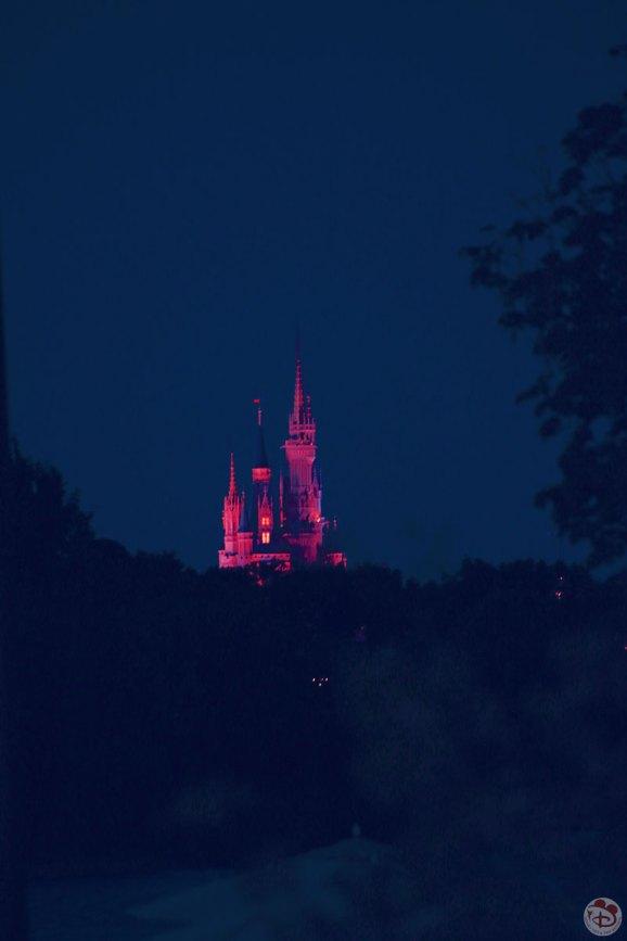 Cinderella Castle from Disney's Polynesian Village Resort