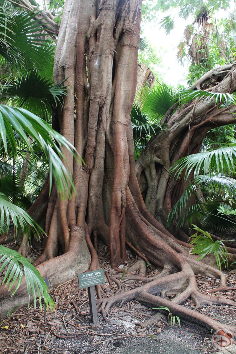 McKee Botanical Garden - Vero Beach - Florida