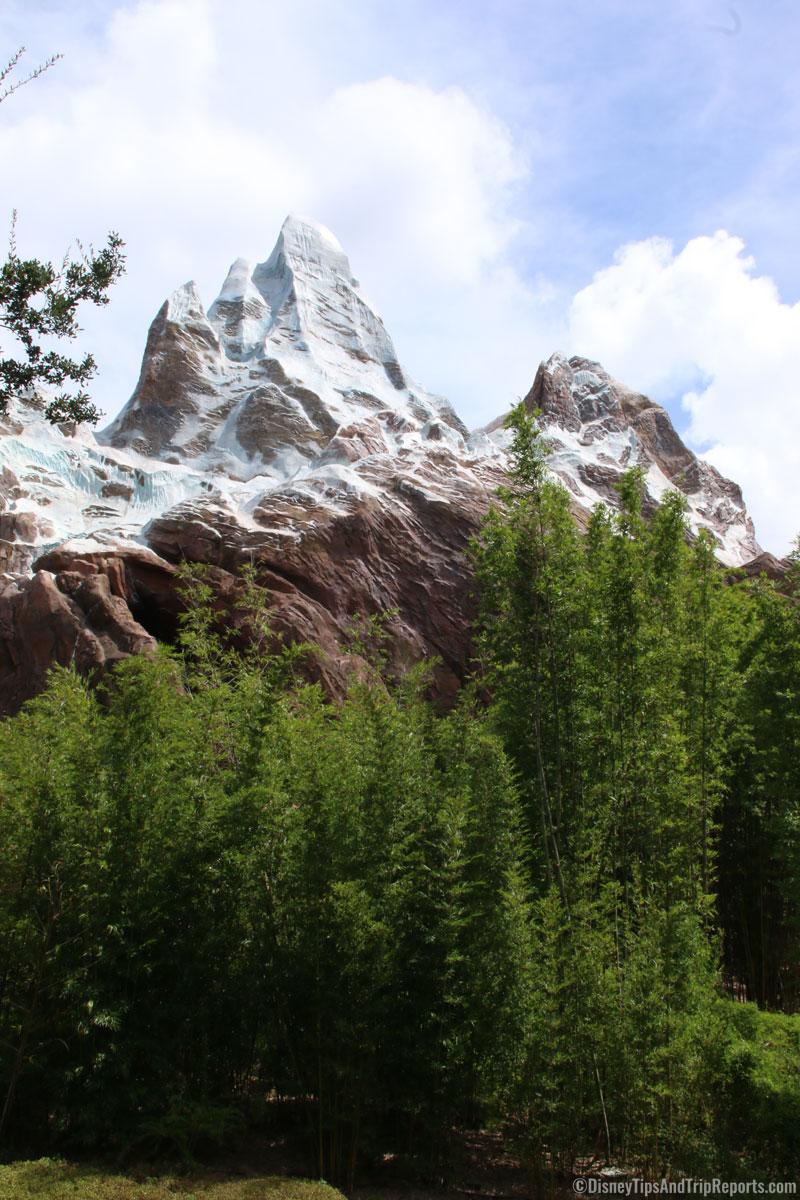 Animal Kingdom - Expedition Everest