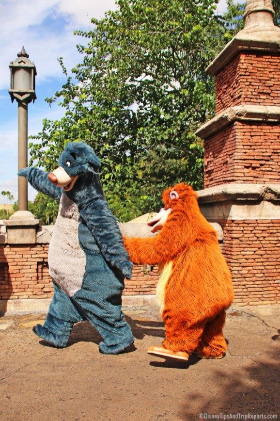 Animal Kingdom - Baloo & King Louie