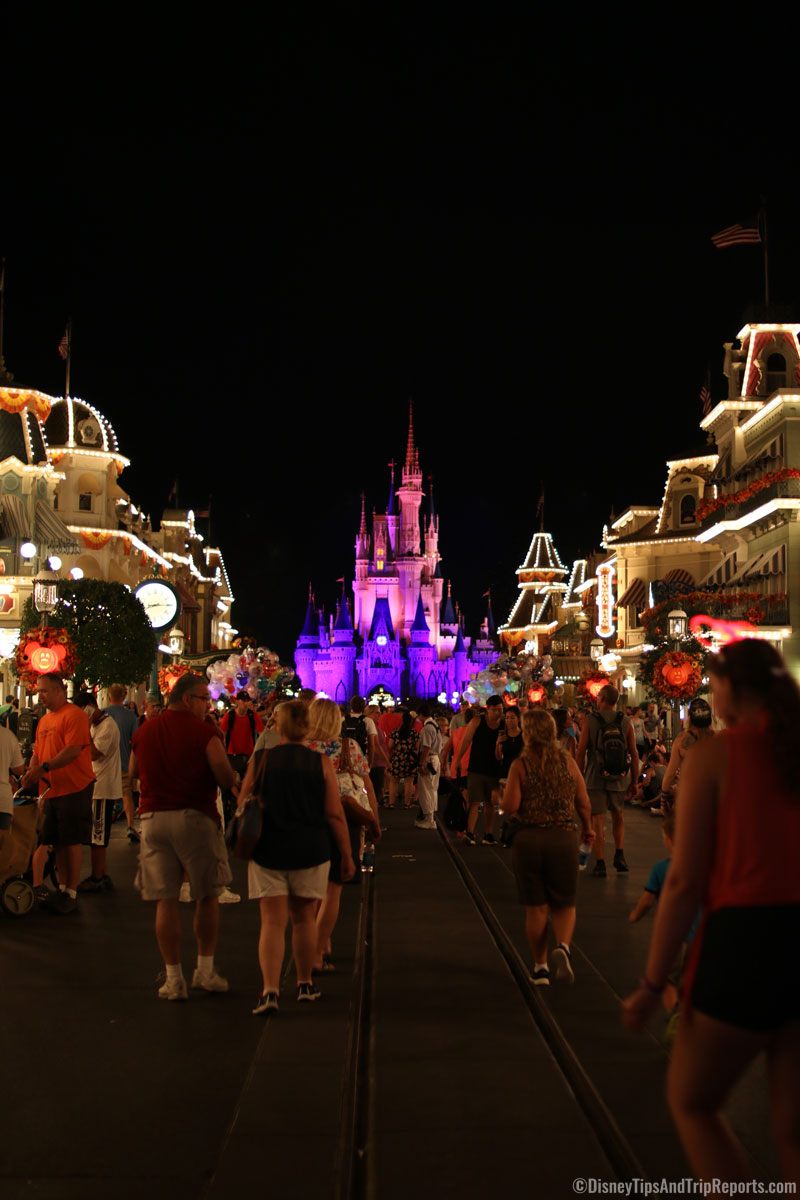 Magic Kingdom - Cinderella Castle at Night