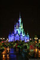 Cinderella Castle - MNSSHP