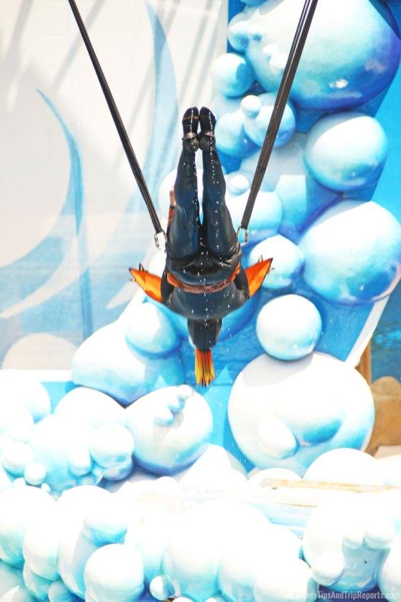 SeaWorld Orlando - Blue Horizons