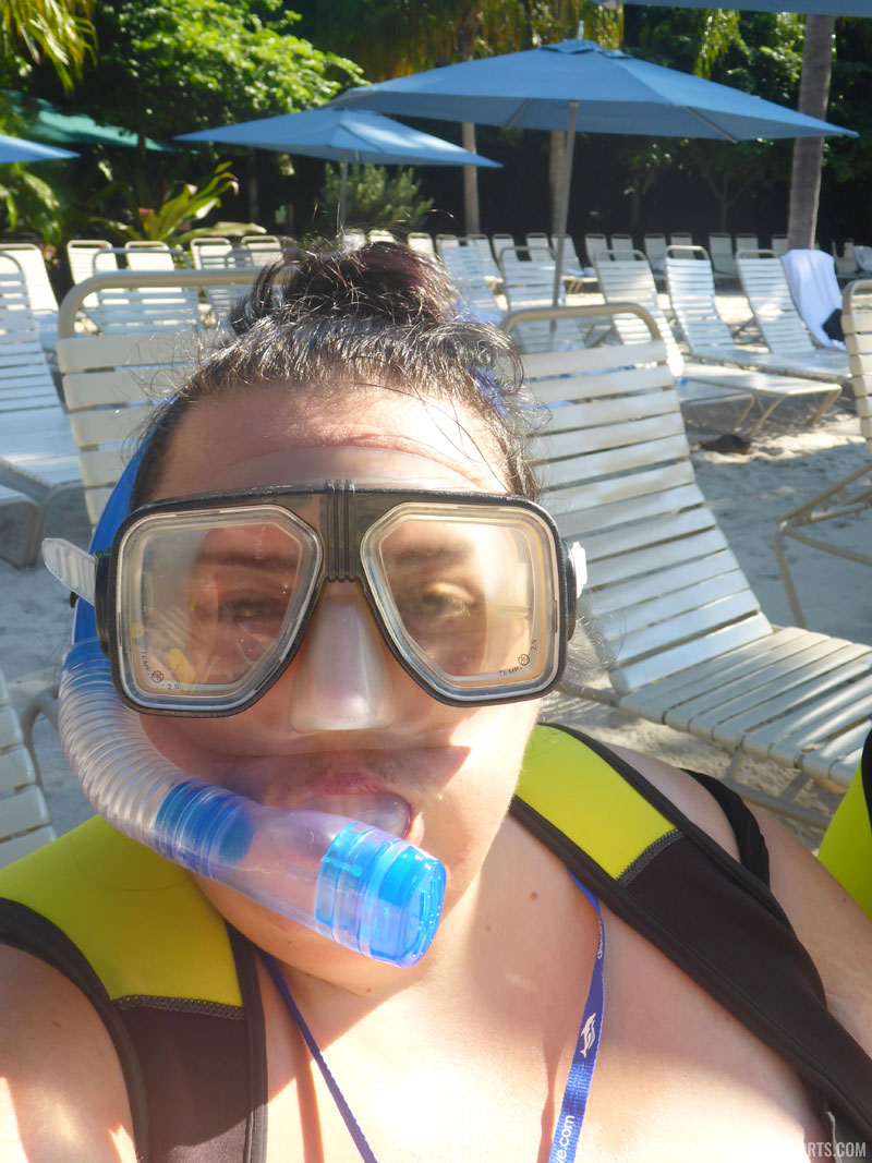 Snorkelling at Discovery Cove