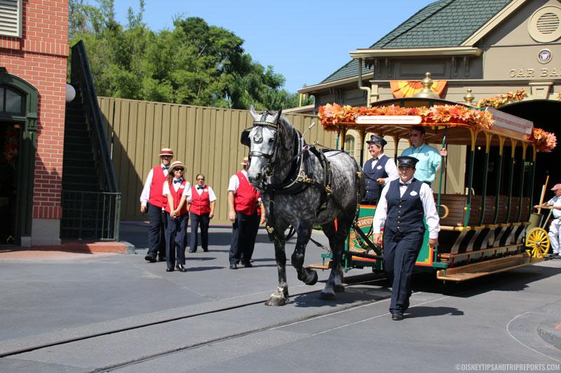 Magic Kingdom - Horse & Carriage