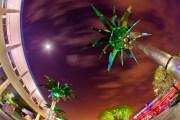 Tomorrowland Palm Trees - Walt Disney World