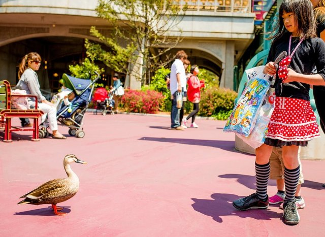 ducks-disneysea-kids