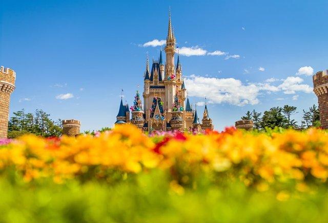 cinderella-castle-tokyo-flower-bokeh