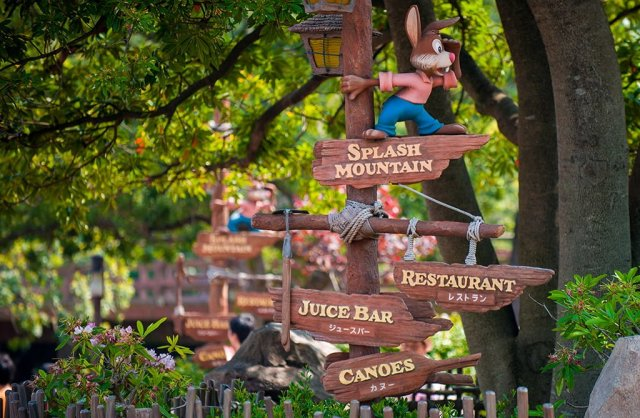 Tokyo-Disneyland-0785