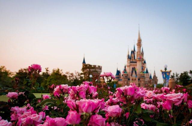 tokyo-disneyland-cinderella-castle-shallow-dof-flowers