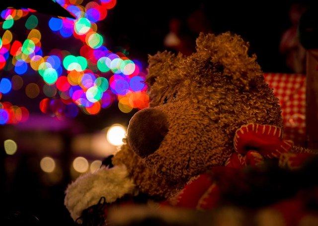 disneyland-christmas-2013-147