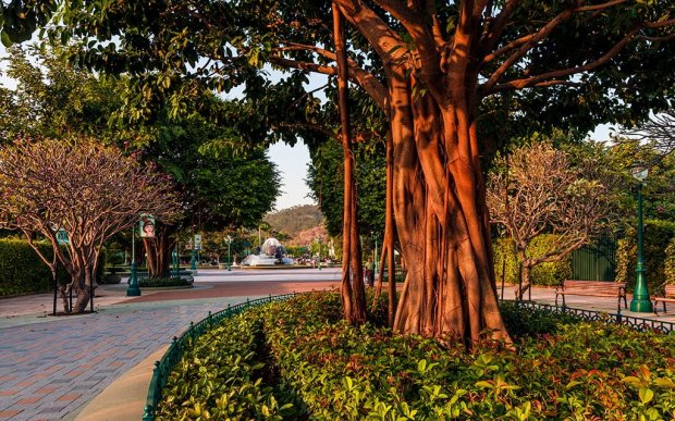 hong-kong-disneyland-hotel-path