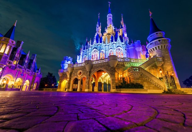 cinderella-castle-rear-side-low-wdw