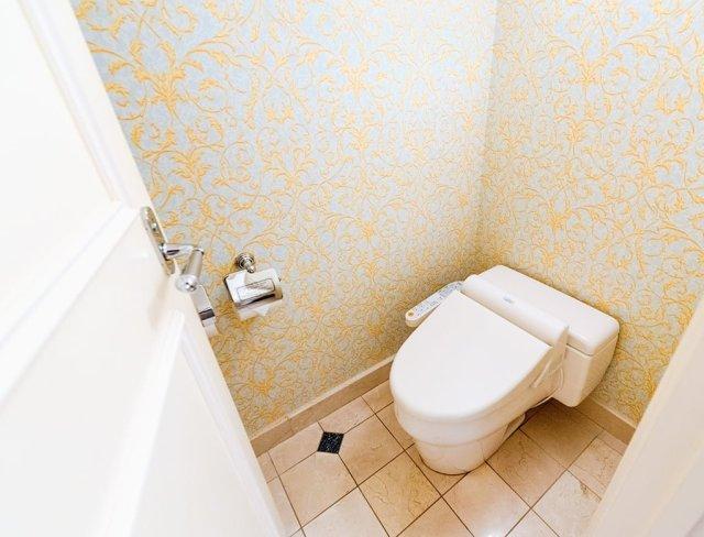 hotel-miracosta-toilet