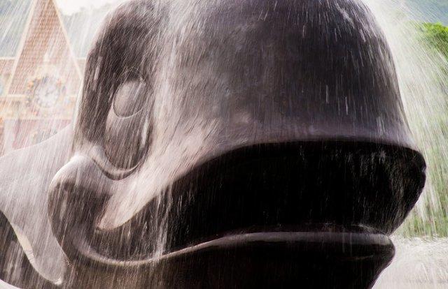 whale-fountain-long-exposure-hong-kong-disneyland