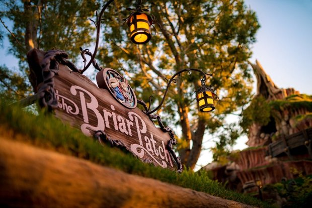 sigma-35-briar-patch-splash-mountain-disneyland