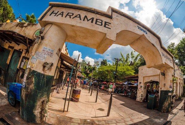 harambe-market-animal-kingdom-disney-world-243