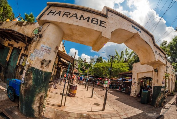 harambe-market-animal-kingdom-disney-world-243