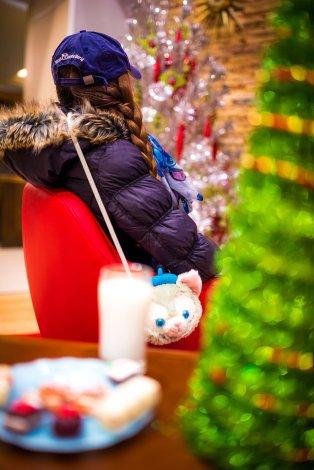 disneyland-hotels-christmas-decorations-004