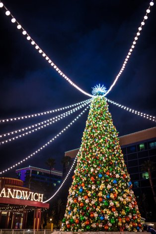 disneyland-hotels-christmas-decorations-017