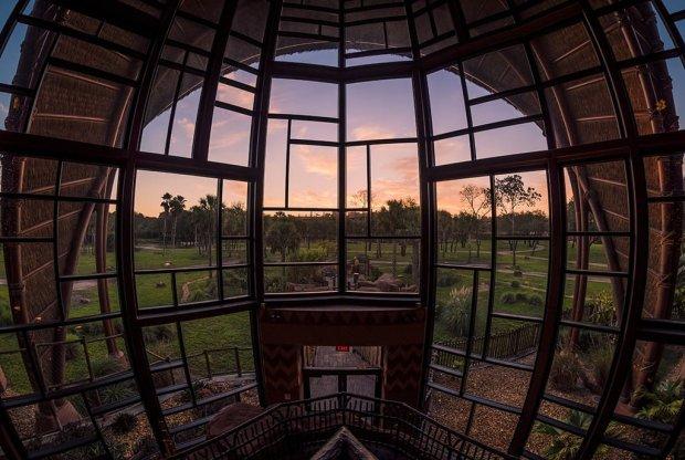 kidani-animal-kingdom-lodge-hotel-disney-world-001