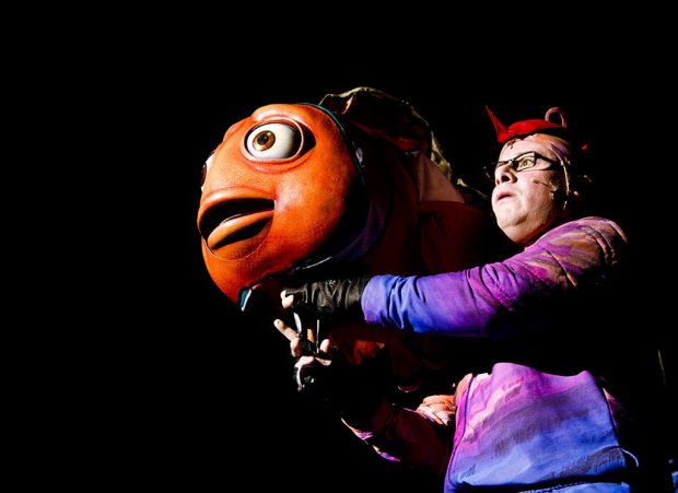 finding-nemo-musical-performer