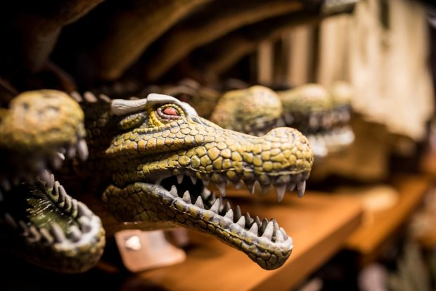 shanghai-disneyland-grand-opening-qaraq-alligator-006
