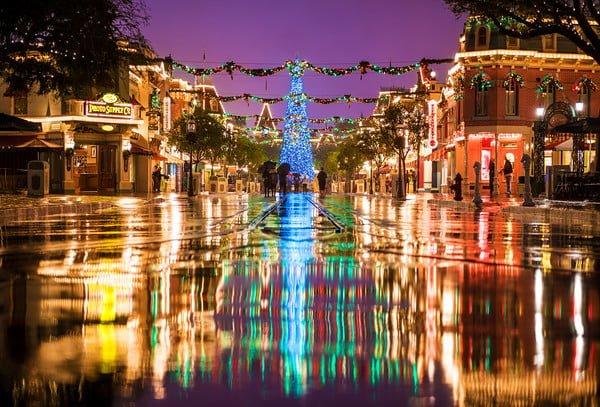 rain-disneyland-shallow-dof-christmas-tree-M