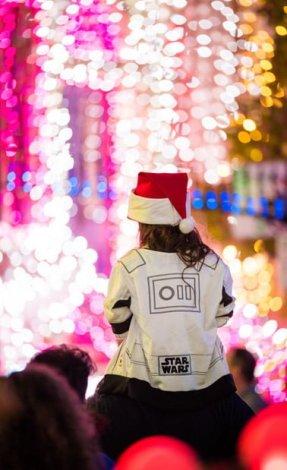 osborne-lights-details-002