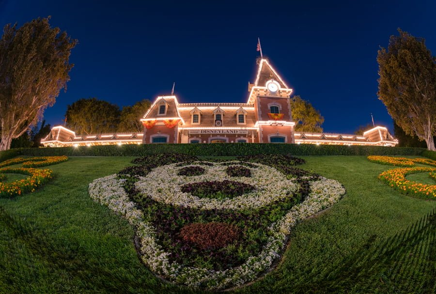 Nikon D850 Review - Page 2 of 2 - Disney Tourist Blog