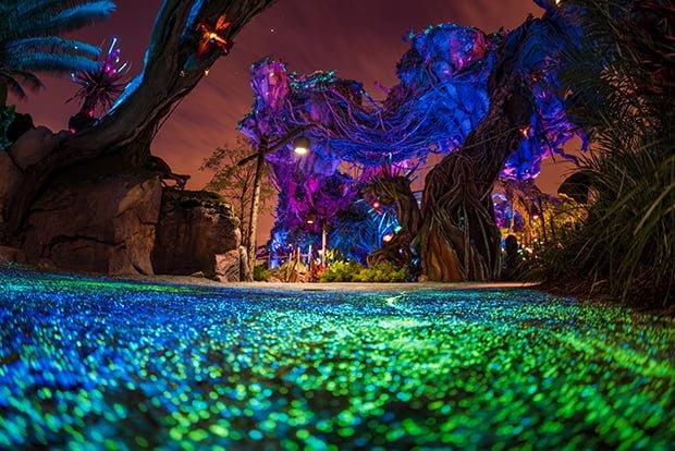 1-Day Disney's Animal Kingdom Park Itinerary - Disney
