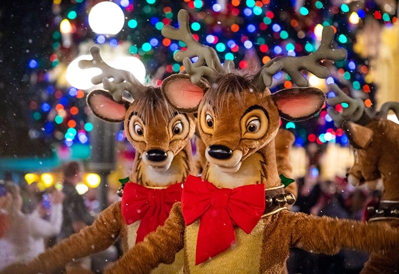 2018-2019 Disney World Planning Guide - Disney Tourist Blog