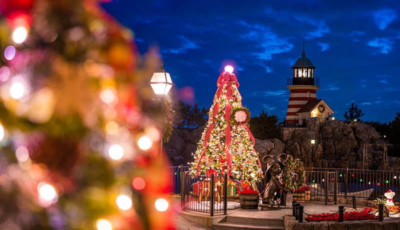Cape Cod Christmas Traditions 2020 A Cape Cod Christmas   Disney Tourist Blog