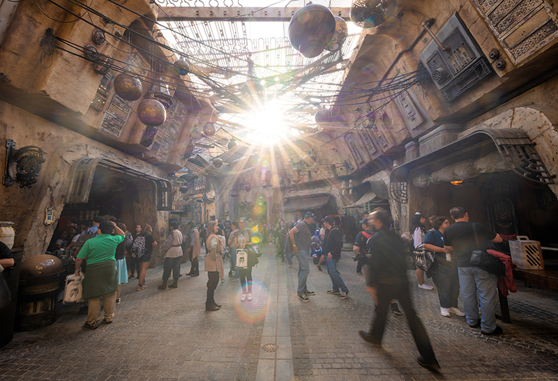Why Are Star Wars Land Crowds So Low? - Disney Tourist Blog